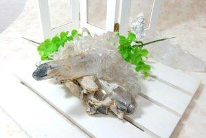 ヒマラヤ・ガネーシュヒマール産水晶のクラスター(16-gs1012-01)